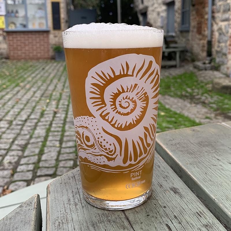 Ammonite Pint 1
